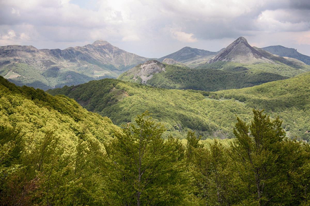 Uitzicht op de Monts du Cantal