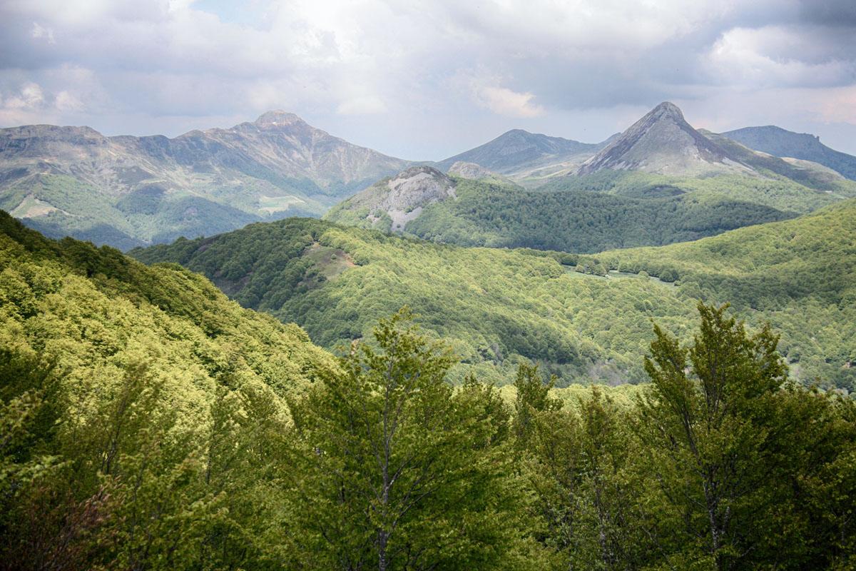 Vijf landelijk gelegen natuurcampings in de Auvergne