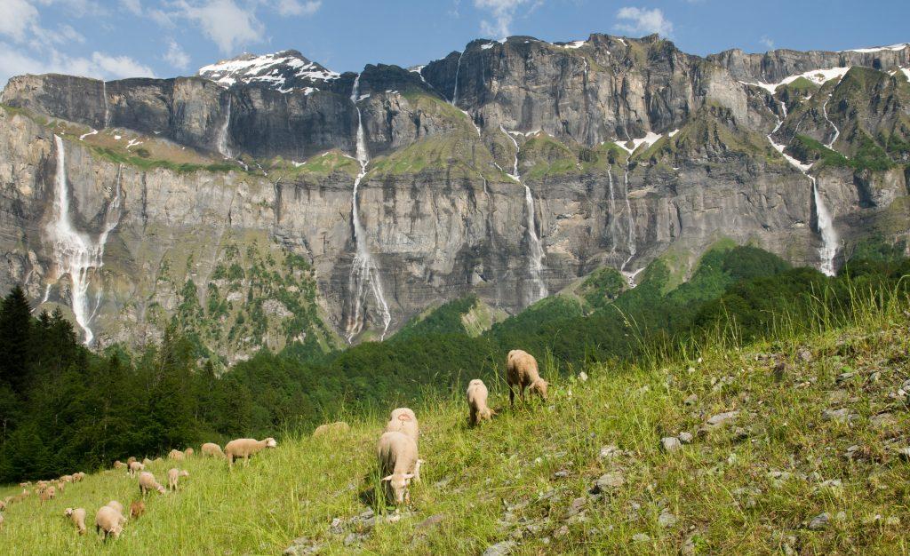 Watervallen Les 30 Cascades du Cirque du Fer à Cheval, Haute-Savoie, Frankrijk