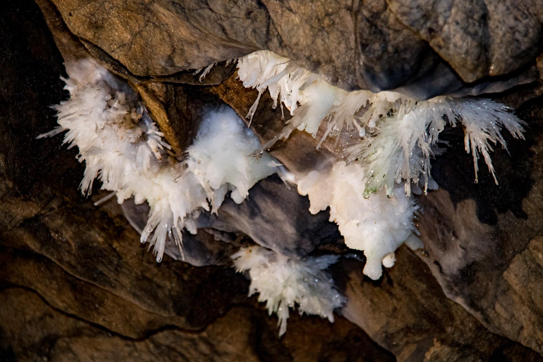 Grotte de la Devèze