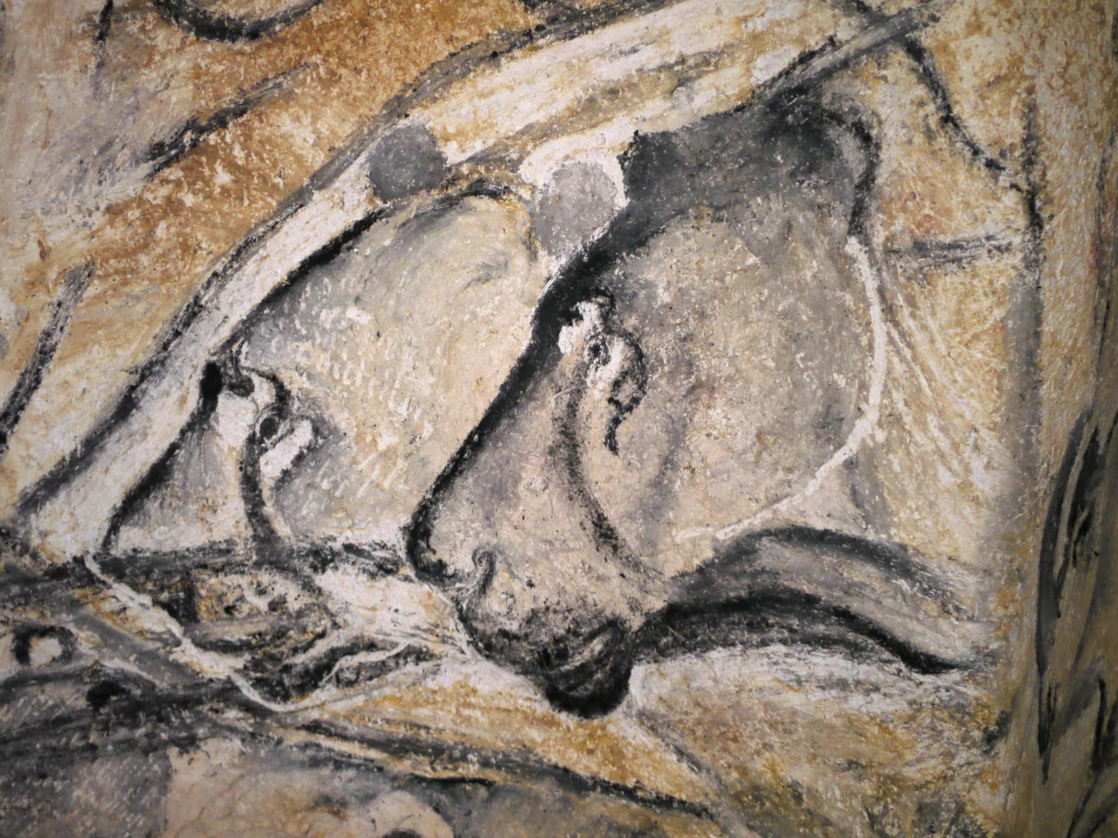 Caverne du Pont d'Arc in de Ardèche, onderdompeling in de prehistorie