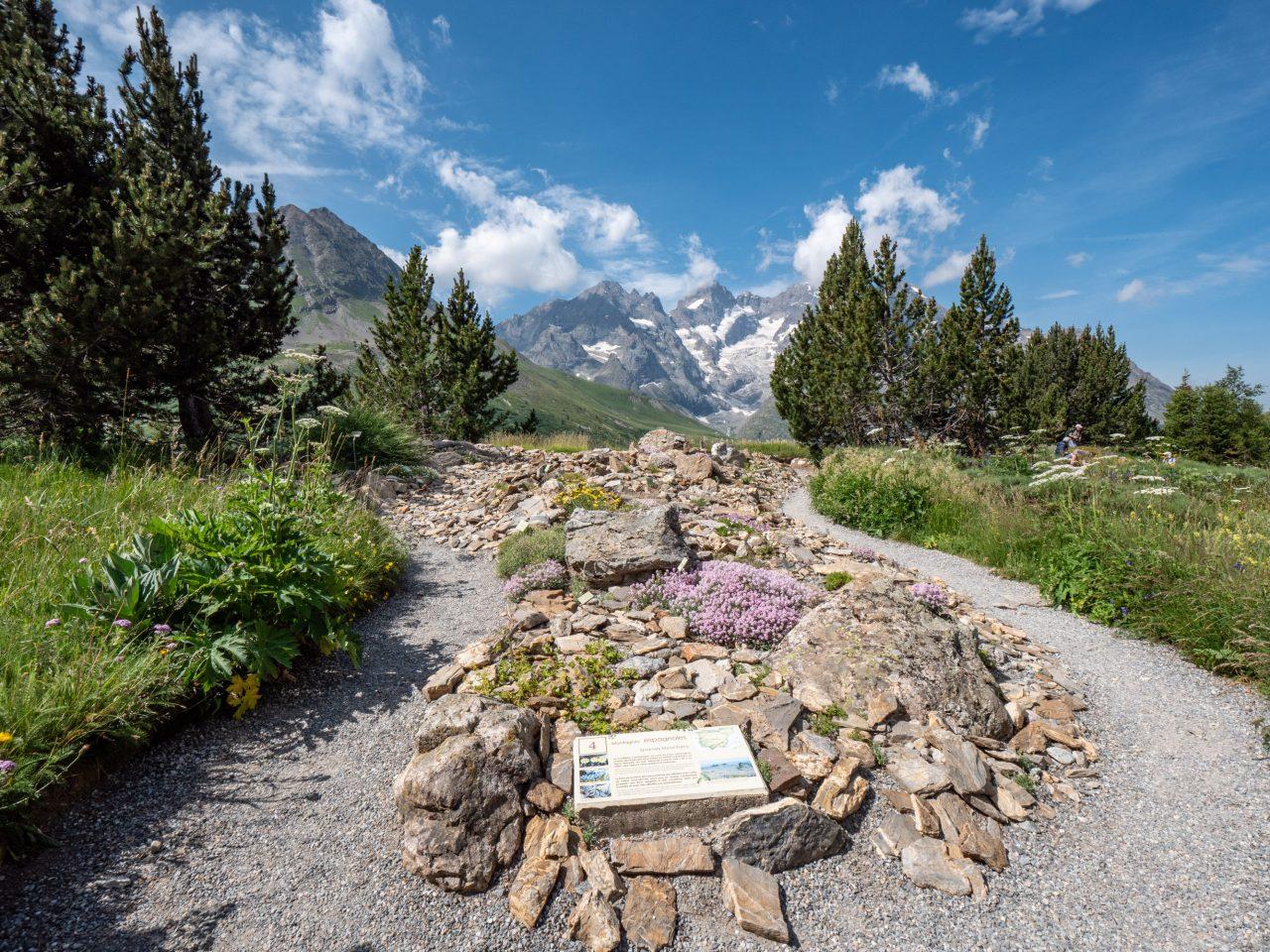 Jardin Alpin du Lautaret