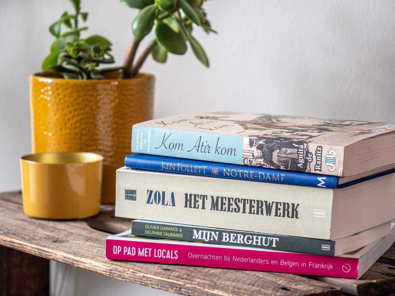 franse-frankrijk-boeken